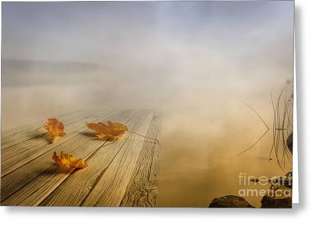 Autumn Fog Greeting Card by Veikko Suikkanen