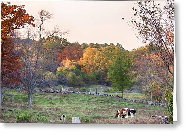 Autumn Forage Before Winter's Arrival Greeting Card by Jeff Folger