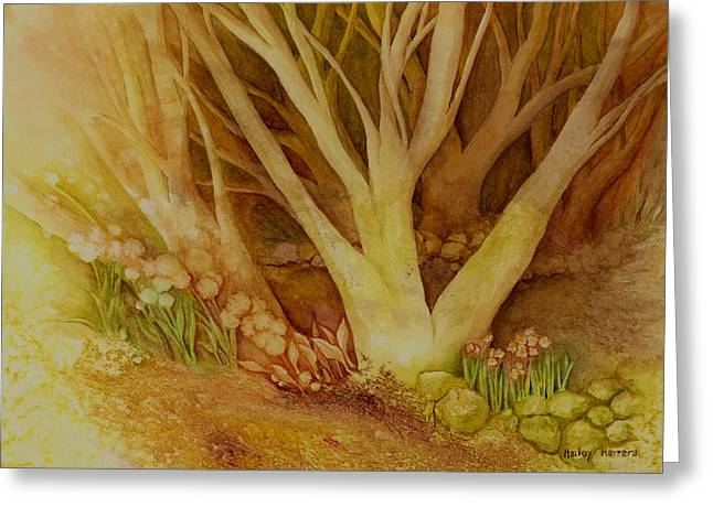 Autumn Landscape Paintings Greeting Cards - Autumn Forest Greeting Card by Hailey E Herrera