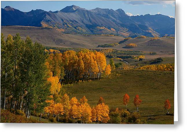 Mount Wilson Greeting Cards - Autumn from Silver Pick road in Colorado Greeting Card by Jetson Nguyen