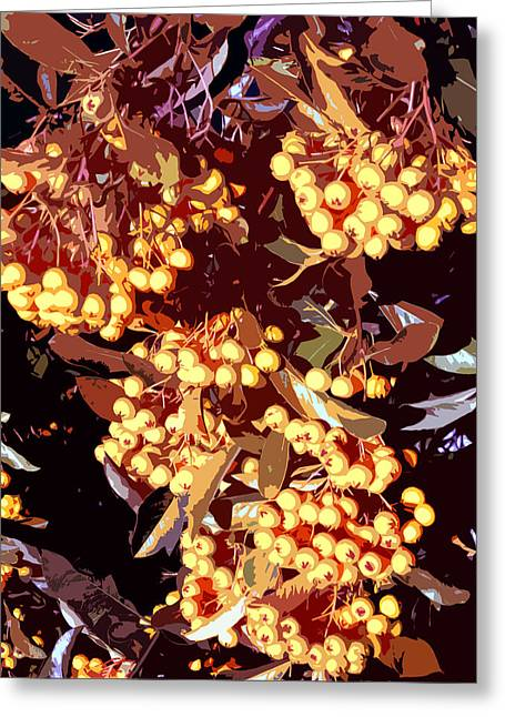 Berries Framed Prints Greeting Cards - Autumn fruits Greeting Card by Wendy Le Ber