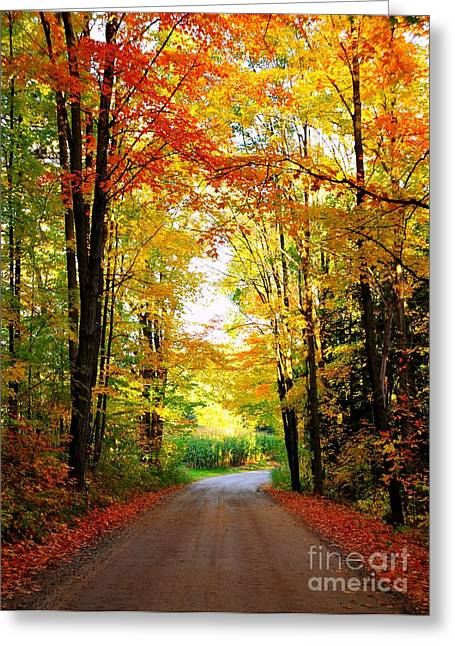 Fall Trees Greeting Cards - Autumn Garland 2 Greeting Card by Terri Gostola