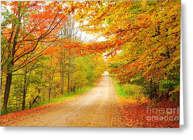 Rural Greeting Cards - Autumn Garland Greeting Card by Terri Gostola
