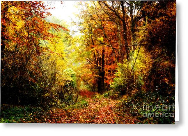 Northamptonshire Greeting Cards - Autumn Glory. Greeting Card by ShabbyChic fine art Photography