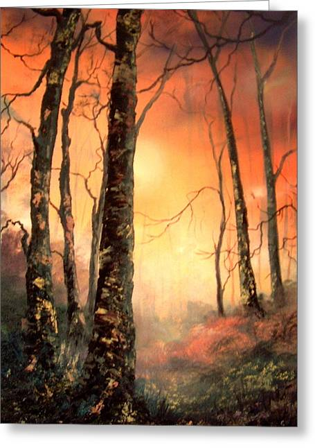 Sledge Training Greeting Cards - Autumn Glow Greeting Card by Jean Walker