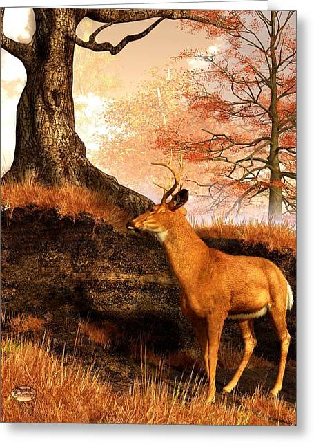 Harts Digital Greeting Cards - Autumn Hart Greeting Card by Daniel Eskridge