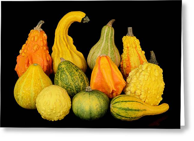 Reflection Harvest Greeting Cards - Autumn Harvest Gourds Greeting Card by Jim Hughes