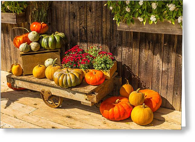 North Fork Greeting Cards - Autumn Harvest Greeting Card by Sean  Mills