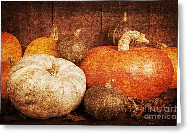 Pumpkins Greeting Cards - Autumn Harvest Textured Greeting Card by Edward Fielding