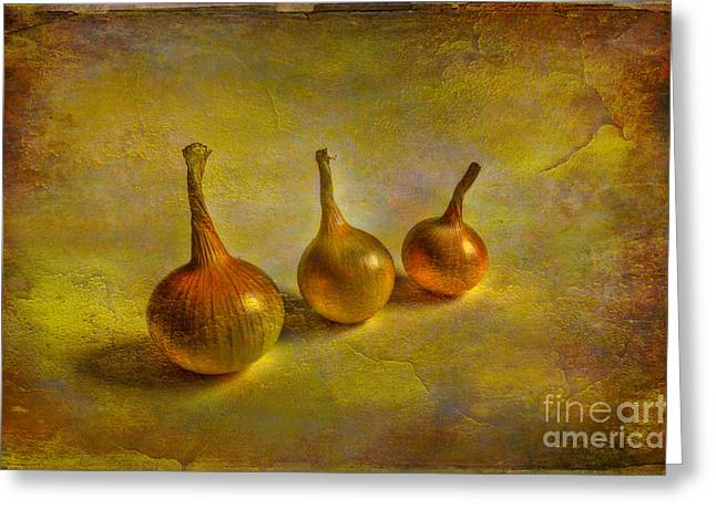 Onion Greeting Cards - Autumn harvest Greeting Card by Veikko Suikkanen