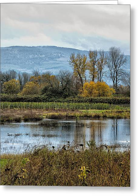 Sauvie Island Greeting Cards - Autumn Haven Greeting Card by Belinda Greb