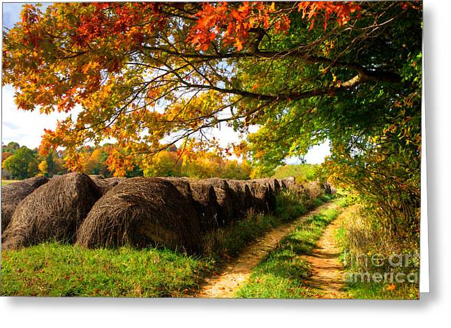 Autumn Hay Bales Blue Ridge Mountains II Greeting Card by Dan Carmichael