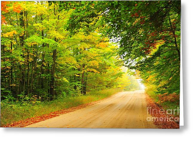 Autumn Trees Greeting Cards - Autumn Heartbreaker Greeting Card by Terri Gostola