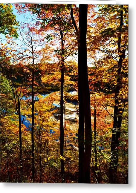Paint Photograph Greeting Cards - Autumn Highlights Greeting Card by Michael Tucker