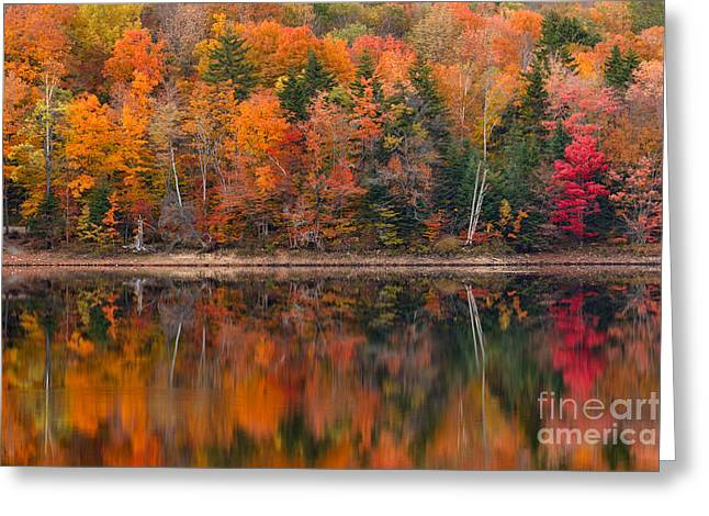 Impressionist Greeting Cards - Autumn Impressions Greeting Card by Charles Kozierok
