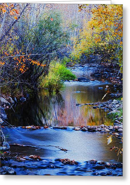 Reflection Of Trees In Stream Greeting Cards - Autumn in Boise Idaho Greeting Card by Vishwanath Bhat