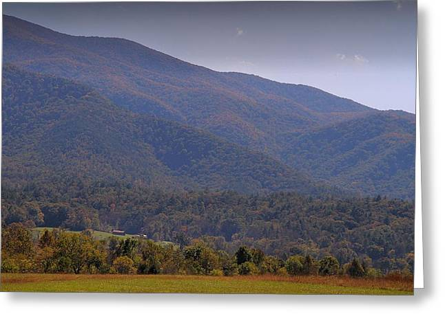 Gatlinburg Tennessee Greeting Cards - Autumn In Cades Cove Tennessee Greeting Card by Dan Sproul
