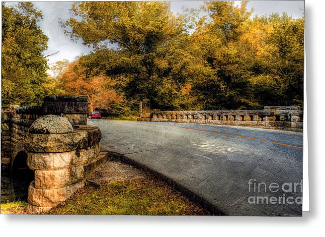 Autumn In Cherokee Park Greeting Card by Darren Fisher