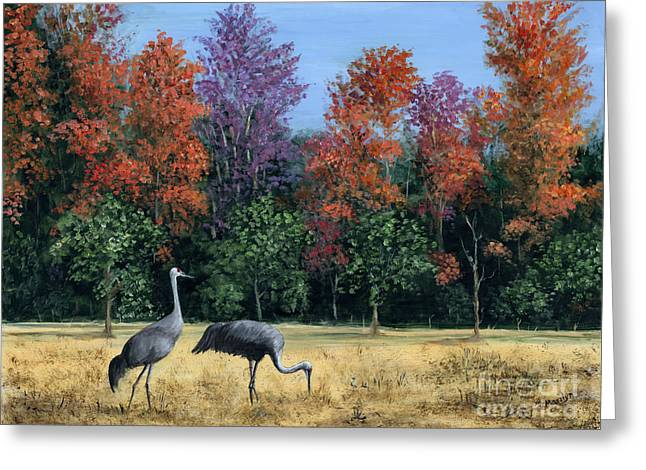 Sandhill Crane Greeting Cards - Autumn In Florida Greeting Card by Marilyn Dunlap