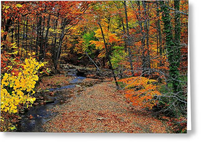 Autumn In Full Bloom Greeting Card by Frozen in Time Fine Art Photography