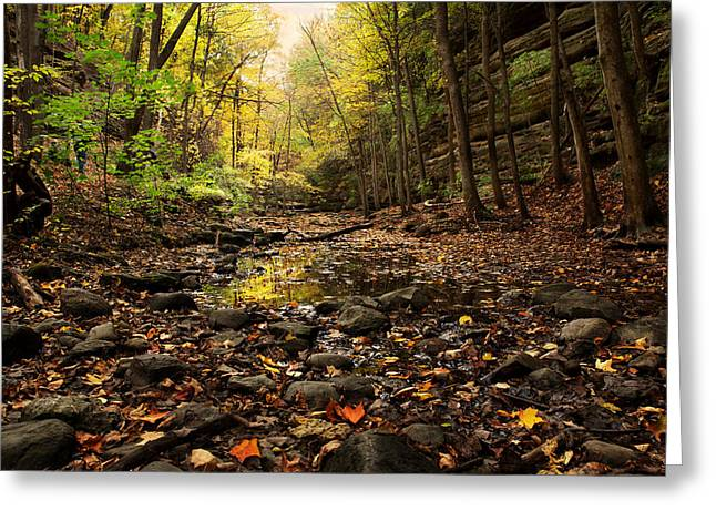 Reflections In River Greeting Cards - Autumn In Illinois Greeting Card by Carol Mellema