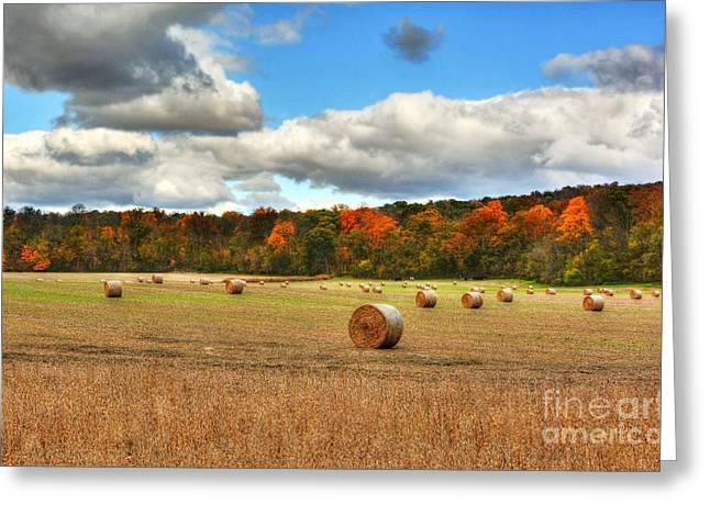 Rural Indiana Greeting Cards - Autumn In Indiana Greeting Card by Mel Steinhauer