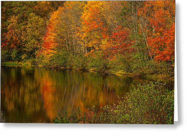 Trees Reflecting In Water Greeting Cards - Autumn in Monroe Greeting Card by Karol  Livote