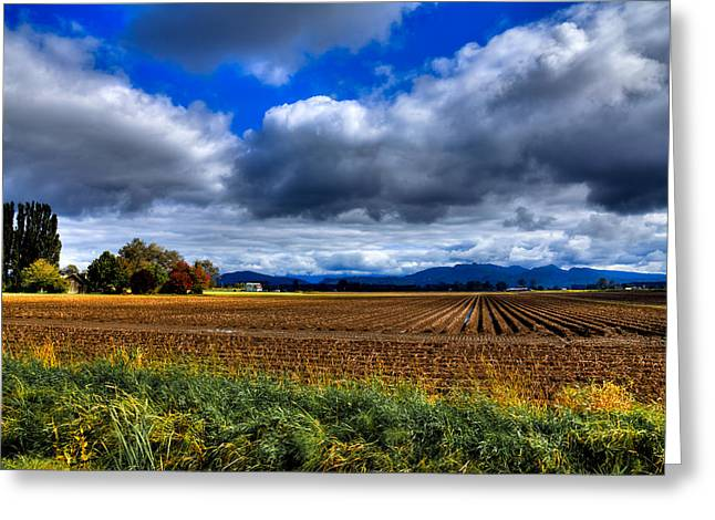 Plowing Field Greeting Cards - Autumn in Mount Vernon Greeting Card by David Patterson