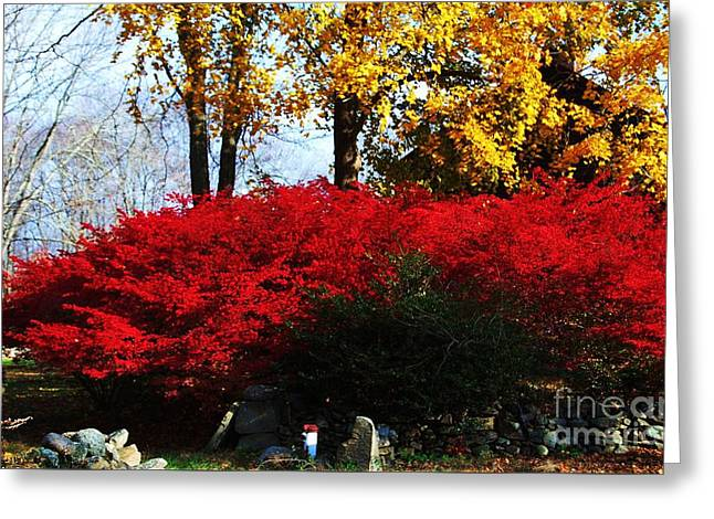 Autumn In New England 2 Greeting Card by Marcus Dagan
