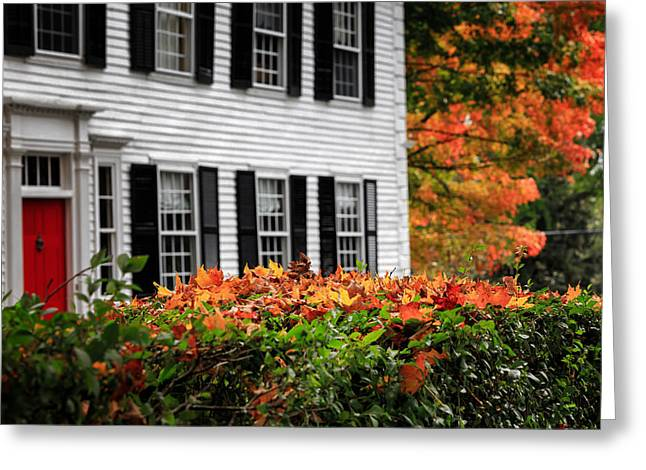 Autumn In New England Greeting Cards - Autumn In New England Greeting Card by Bill  Wakeley