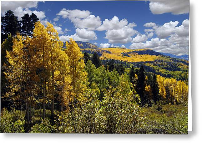 New Mexico Greeting Cards - Autumn in New Mexico Greeting Card by Kurt Van Wagner
