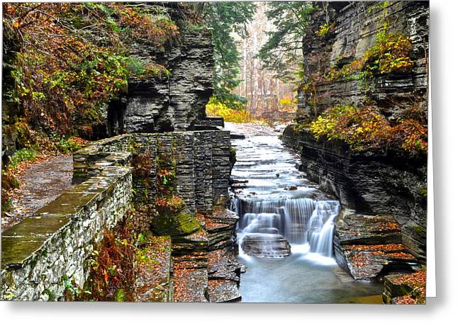 Stepping Stones Greeting Cards - Autumn in New York Greeting Card by Frozen in Time Fine Art Photography