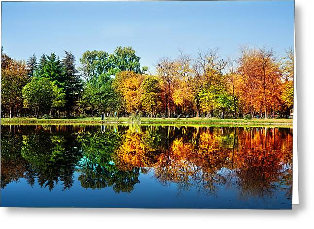 Autumn Landscape Photographs Greeting Cards - Autumn in October Greeting Card by Ivan Vukelic