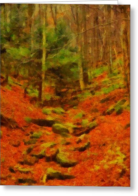 Hiking Mixed Media Greeting Cards - Autumn In Sproul State Forest Greeting Card by Dan Sproul