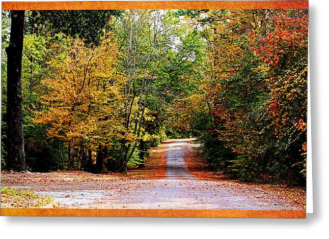 Willow Lake Greeting Cards - Autumn in Texas Greeting Card by Judy Vincent