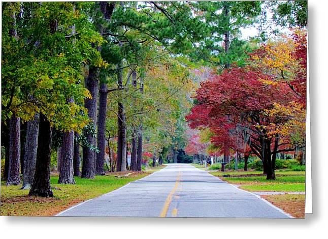 Autumn In The Air Greeting Card by Cynthia Guinn