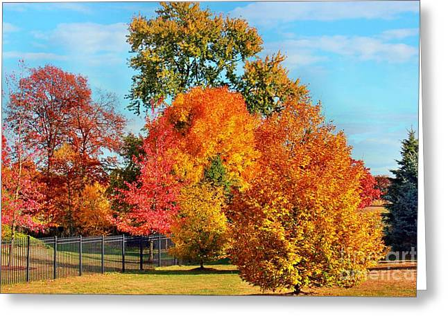 Judy Palkimas Greeting Cards - Autumn In The Air Greeting Card by Judy Palkimas