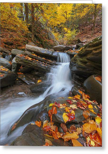 Upstate Greeting Cards - Autumn In The Catskills Greeting Card by Rick Berk
