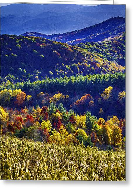 Autumn In The Mountains Of Western North Carolina Greeting Card by John Haldane