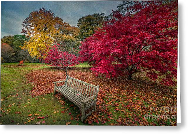 Seated Digital Art Greeting Cards - Autumn in the Park Greeting Card by Adrian Evans