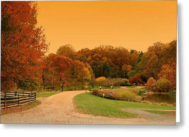 Autumn In The Country Greeting Cards - Autumn In The Park - Holmdel Park Greeting Card by Angie Tirado
