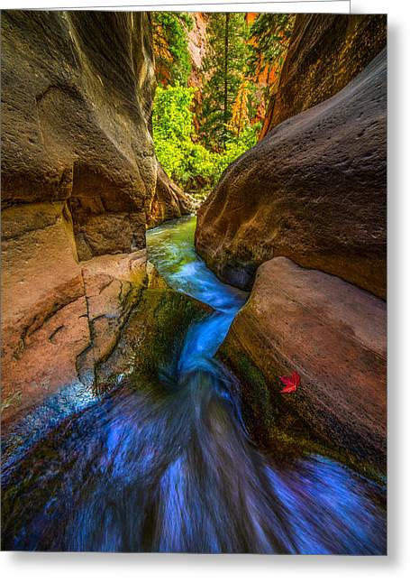 Utah Slot Canyon Greeting Cards - Autumn in the Slot Greeting Card by Peter Irwindale