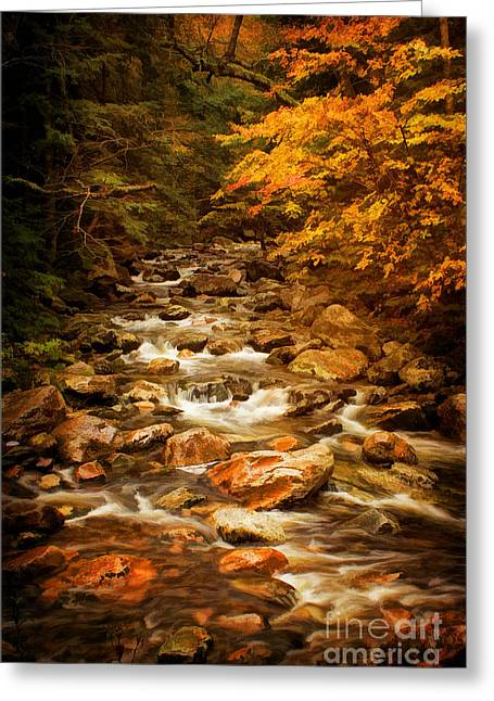 Autumn In Vermont Greeting Card by Priscilla Burgers