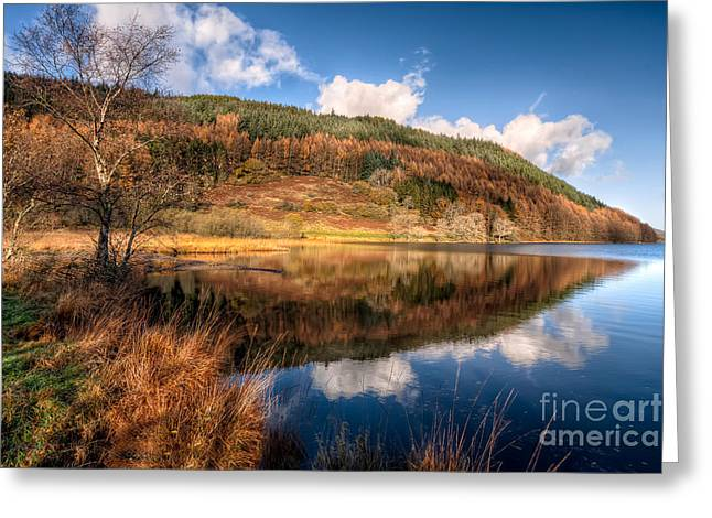 Llyn Greeting Cards - Autumn in Wales Greeting Card by Adrian Evans