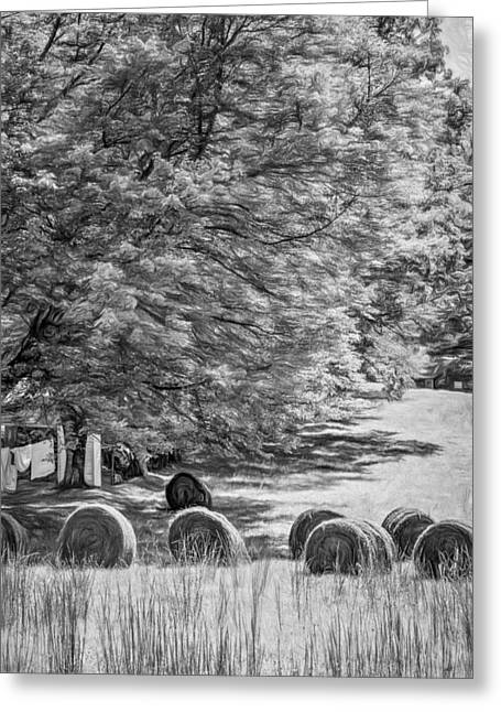 Metal Sheet Greeting Cards - Autumn in West Virginia - Paint bw Greeting Card by Steve Harrington