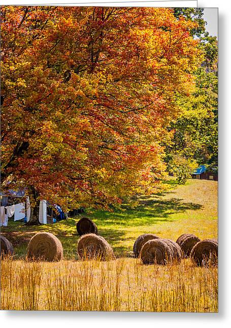 Metal Sheet Greeting Cards - Autumn in West Virginia Greeting Card by Steve Harrington