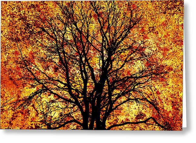 November Framed Prints Greeting Cards - Autumn Greeting Card by JW  Digital Art