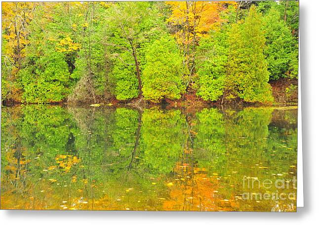 Fall Trees Greeting Cards - Autumn Kaleidoscope 11 Greeting Card by Terri Gostola