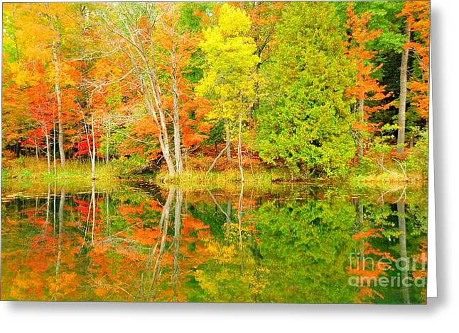 Fall Greeting Cards - Autumn Kaleidoscope 7 Greeting Card by Terri Gostola