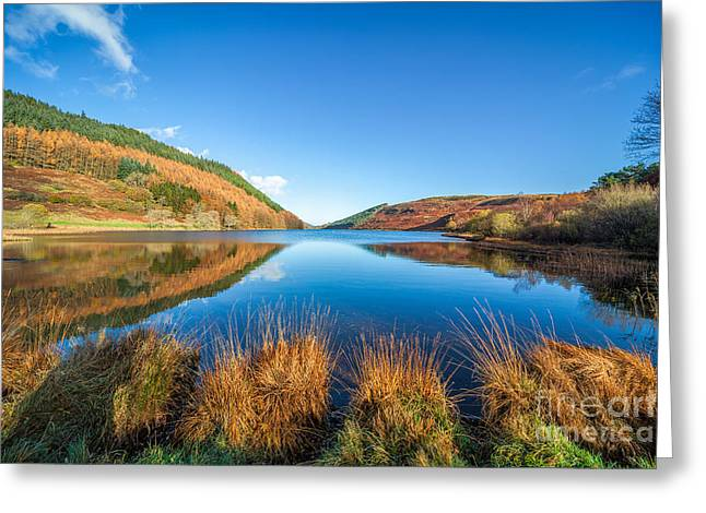Autumn Lake Greeting Card by Adrian Evans